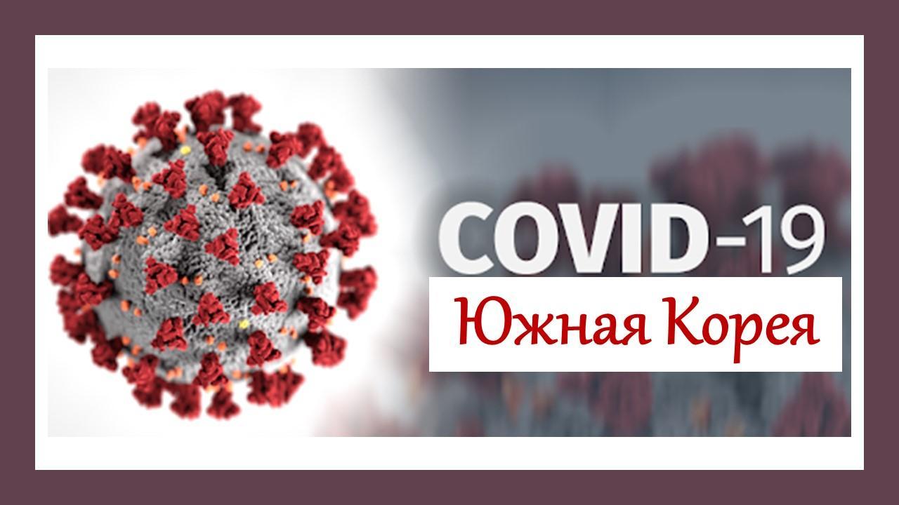 коронавирус в корее