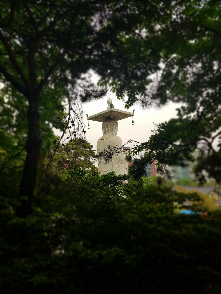 фотопрогулка в буддийский храм